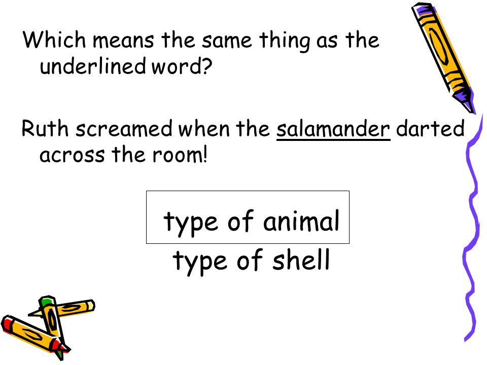 type of animal type of shell