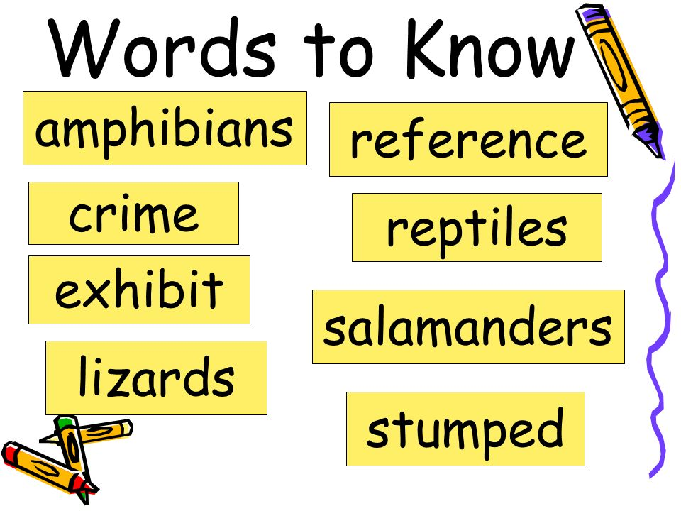 Words to Know amphibians reference crime reptiles exhibit salamanders