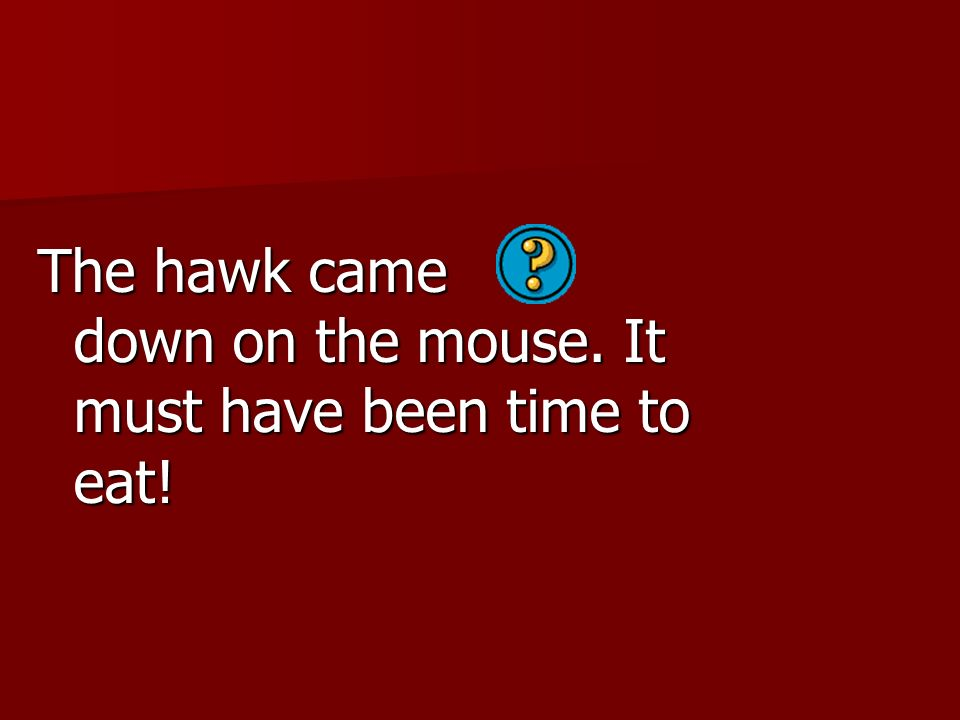The hawk came down on the mouse. It must have been time to eat!
