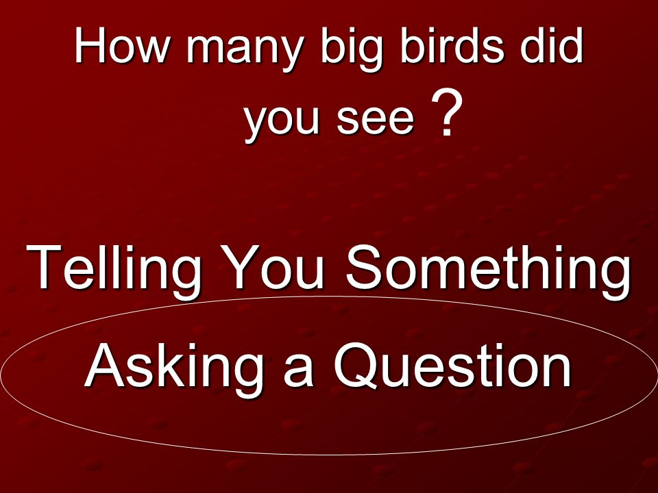 Telling You Something Asking a Question How many big birds did