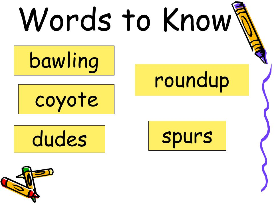 Words to Know bawling roundup coyote spurs dudes