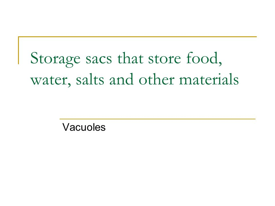 Storage sacs that store food, water, salts and other materials