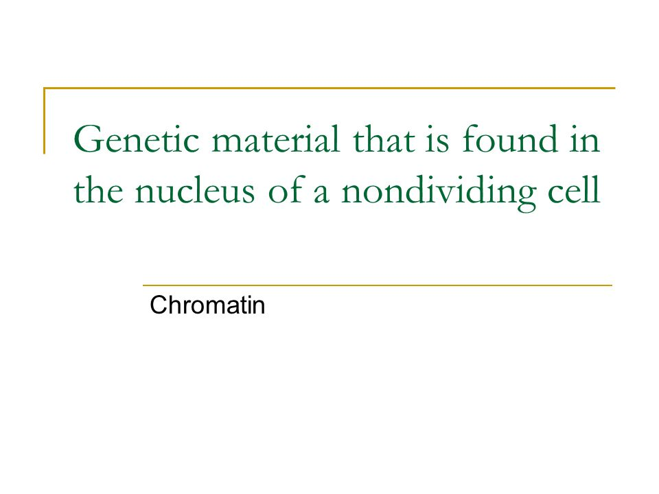 Genetic material that is found in the nucleus of a nondividing cell