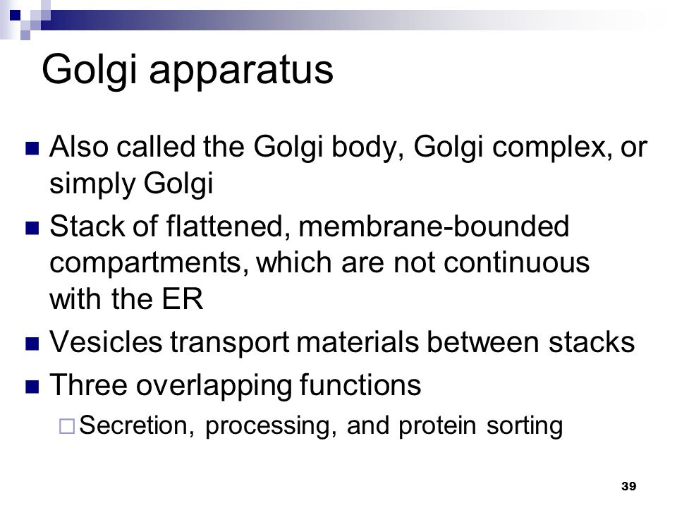 Golgi apparatus Also called the Golgi body, Golgi complex, or simply Golgi.