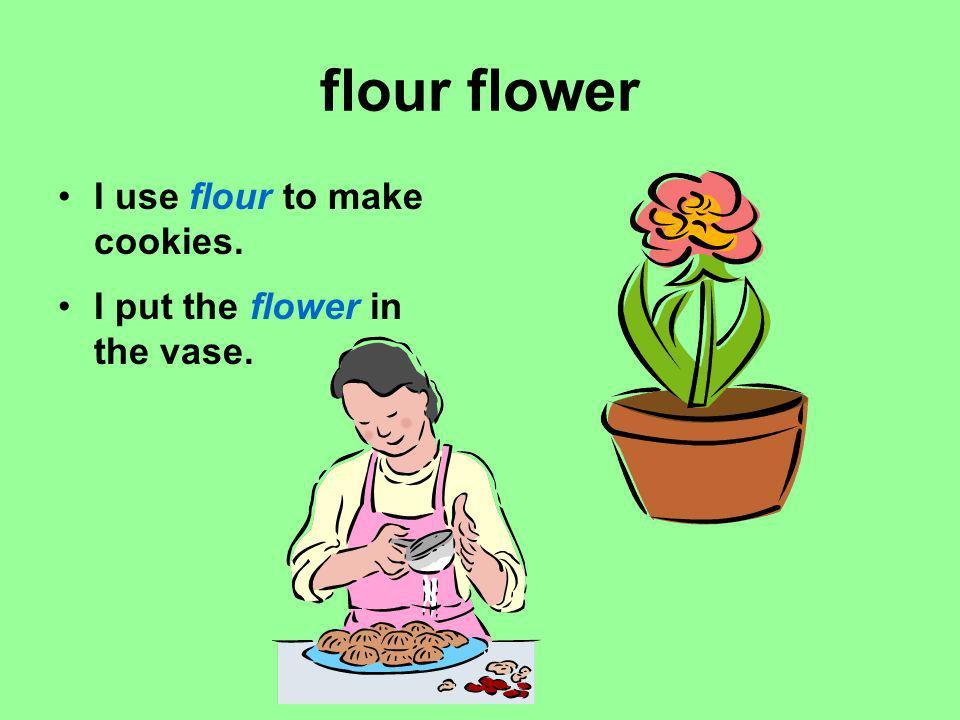 flour flower I use flour to make cookies.