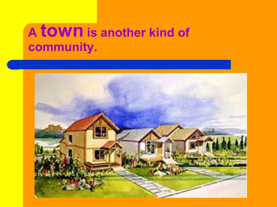 A town is another kind of community.