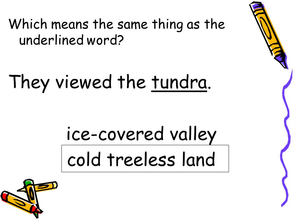 They viewed the tundra. ice-covered valley cold treeless land