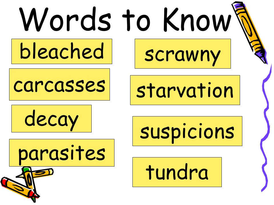 Words to Know bleached scrawny carcasses starvation decay suspicions