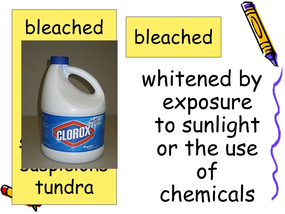 whitened by exposure to sunlight or the use of chemicals