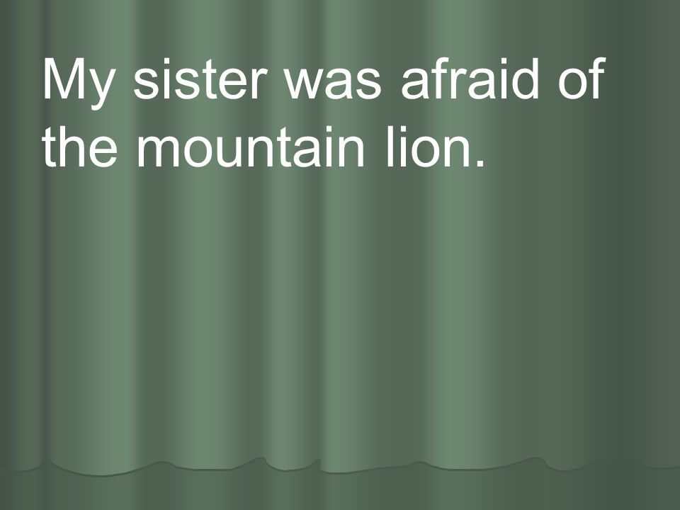 My sister was afraid of the mountain lion.