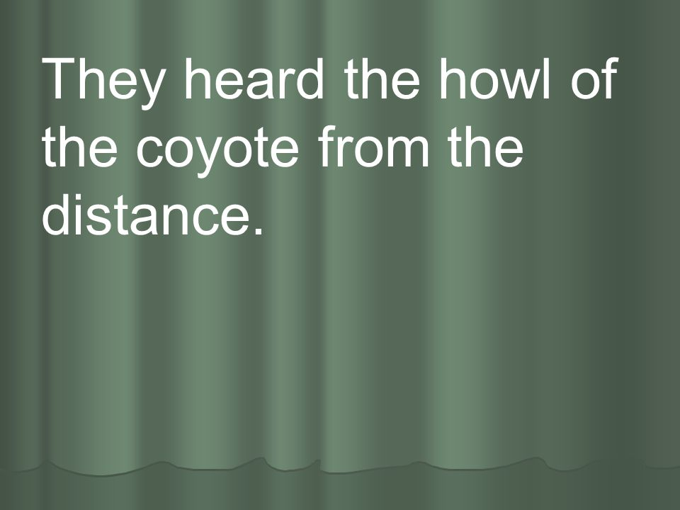 They heard the howl of the coyote from the distance.