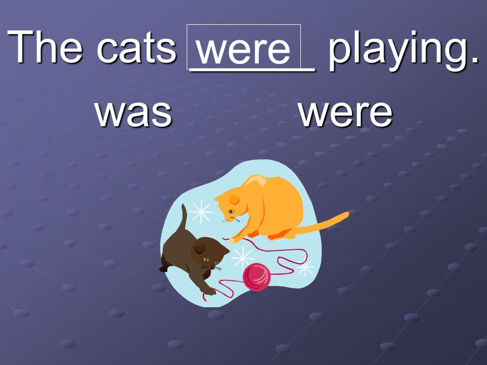 The cats _____ playing. was were were