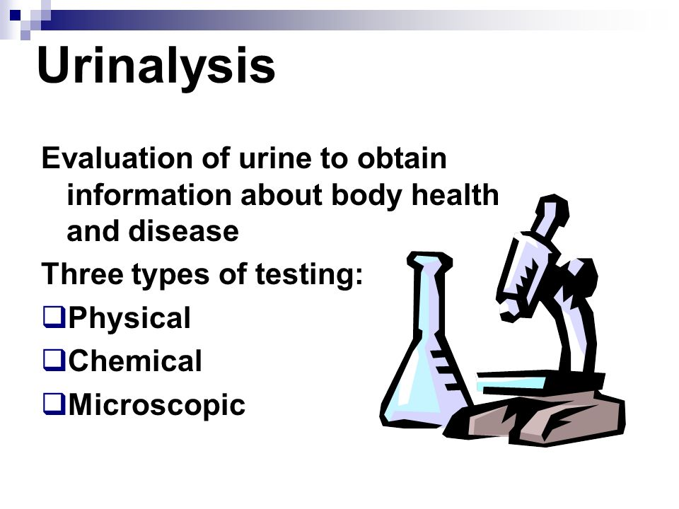 physical and chemical analysis of urine essay A urinalysis is a laboratory test to detect problems with your body that can show signs in your urine learn about the procedure and how to prepare  or as part of a routine medical or physical.