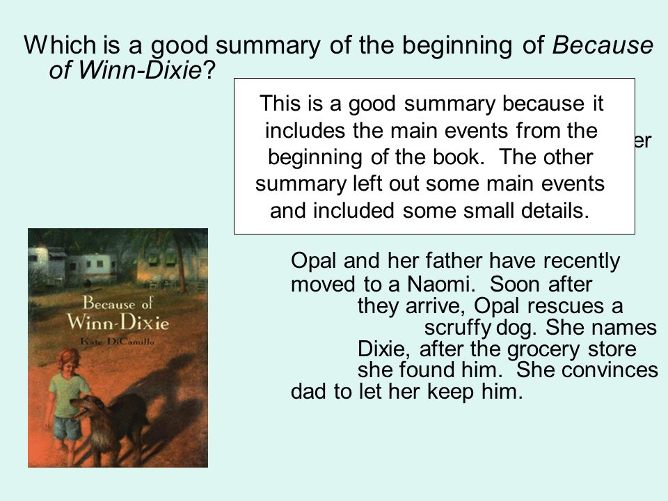 Which is a good summary of the beginning of Because of Winn-Dixie