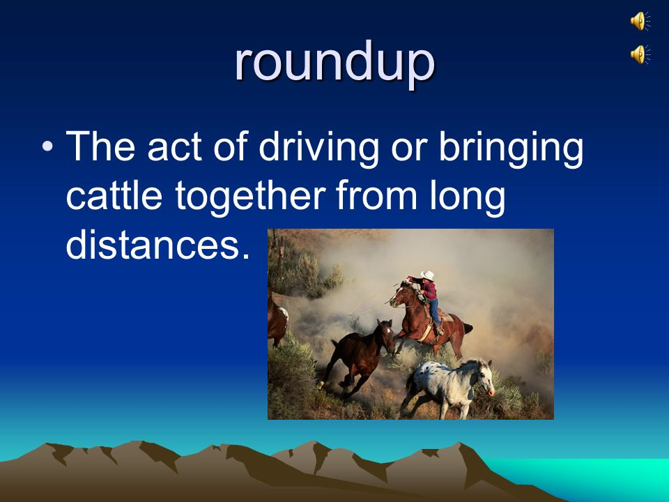 roundup The act of driving or bringing cattle together from long distances.