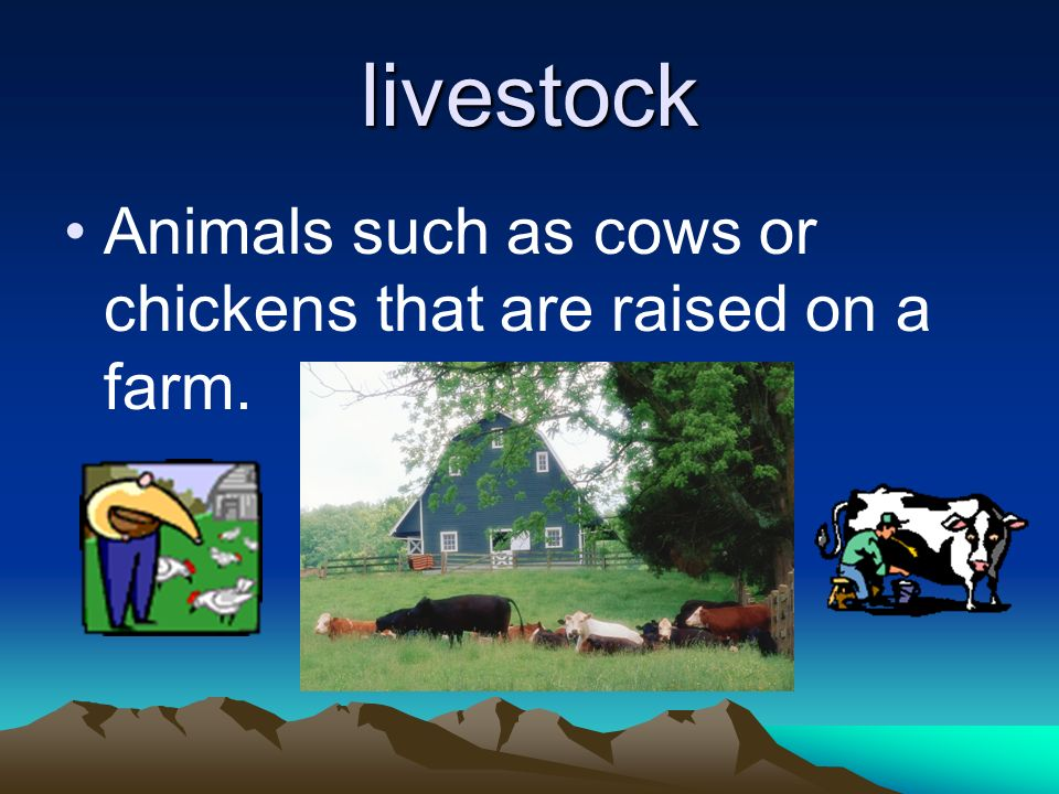 livestock Animals such as cows or chickens that are raised on a farm.