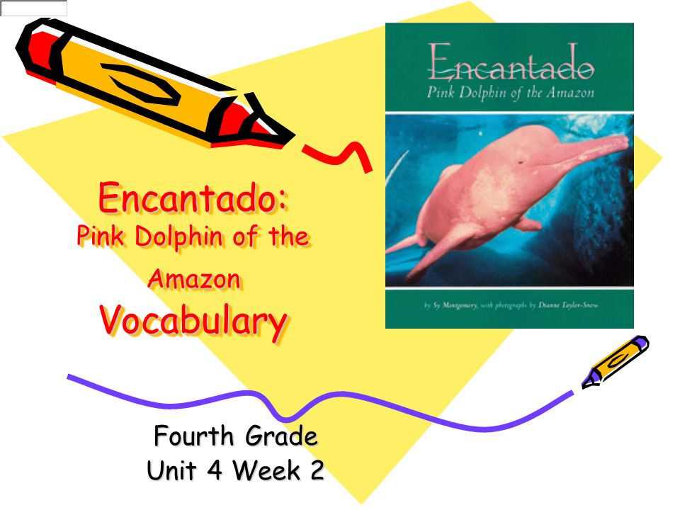 Encantado: Pink Dolphin of the Amazon Vocabulary