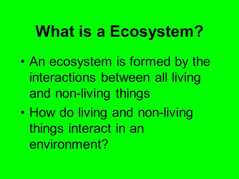What is a Ecosystem An ecosystem is formed by the interactions between all living and non-living things.