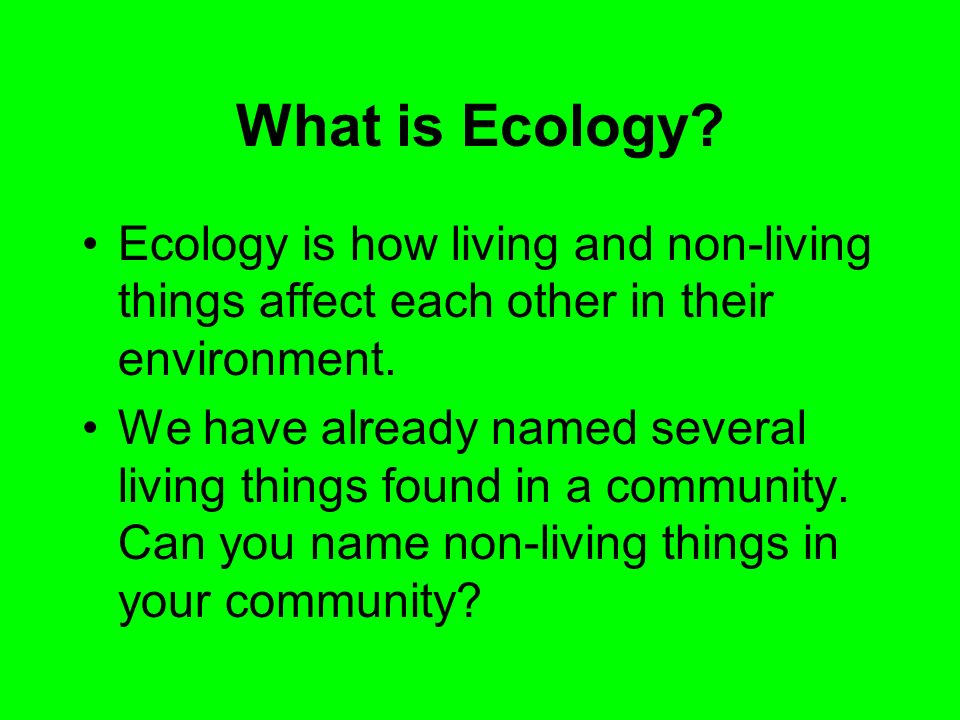 What is Ecology Ecology is how living and non-living things affect each other in their environment.