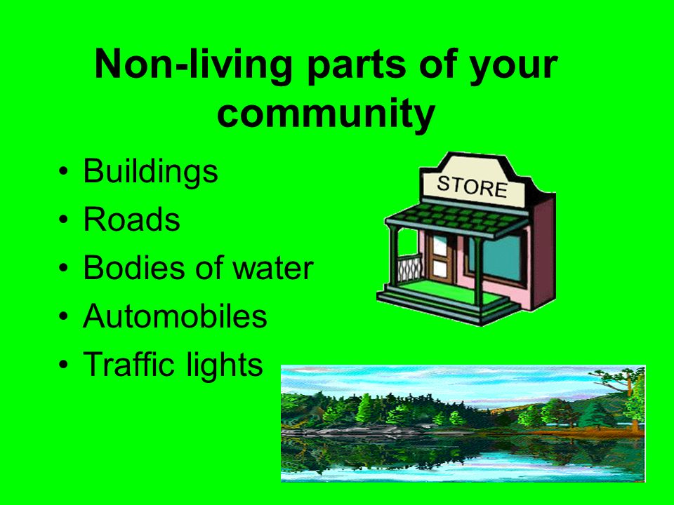 Non-living parts of your community