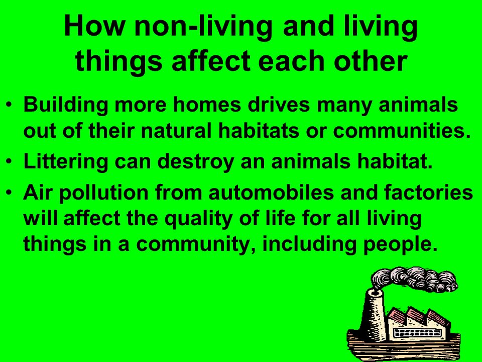 How non-living and living things affect each other