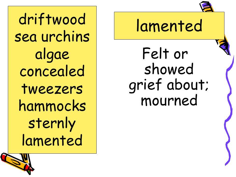 Felt or showed grief about; mourned
