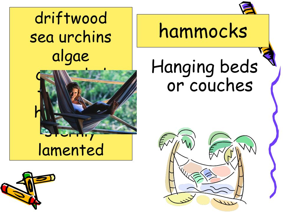 Hanging beds or couches