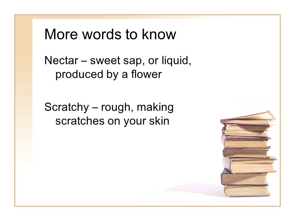More words to know Nectar – sweet sap, or liquid, produced by a flower