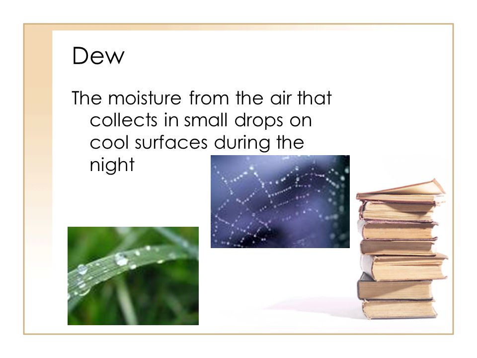 Dew The moisture from the air that collects in small drops on cool surfaces during the night