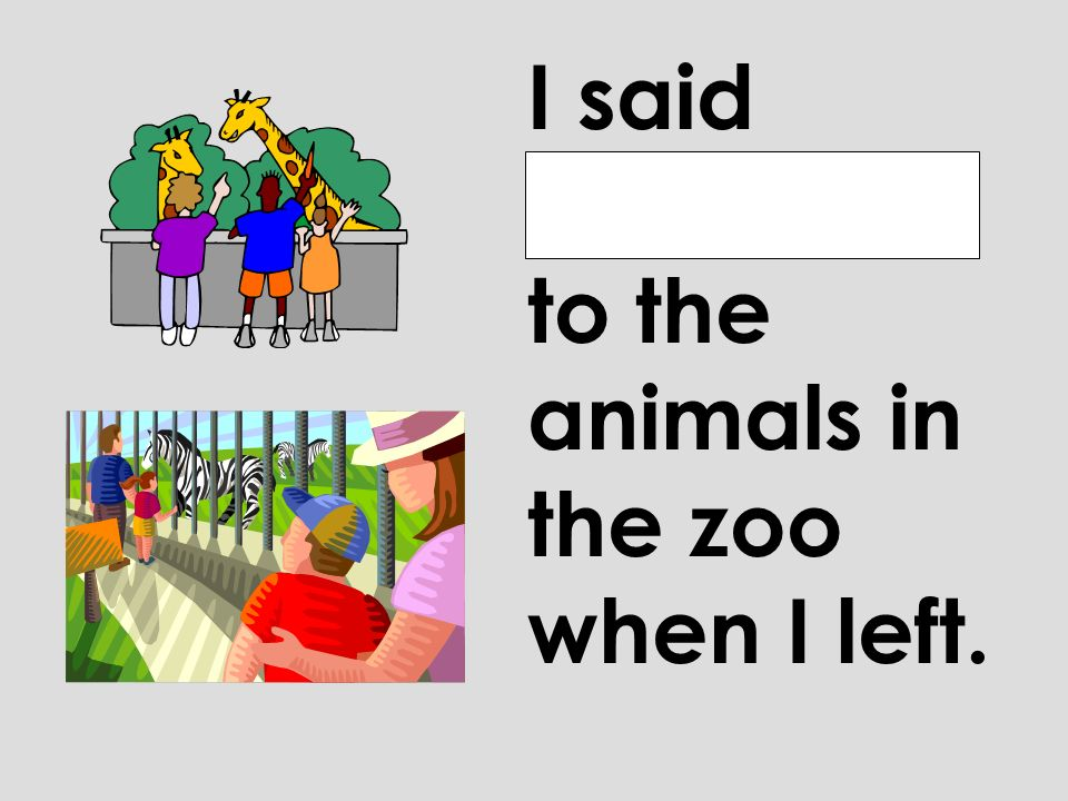 I said good-bye to the animals in the zoo when I left.