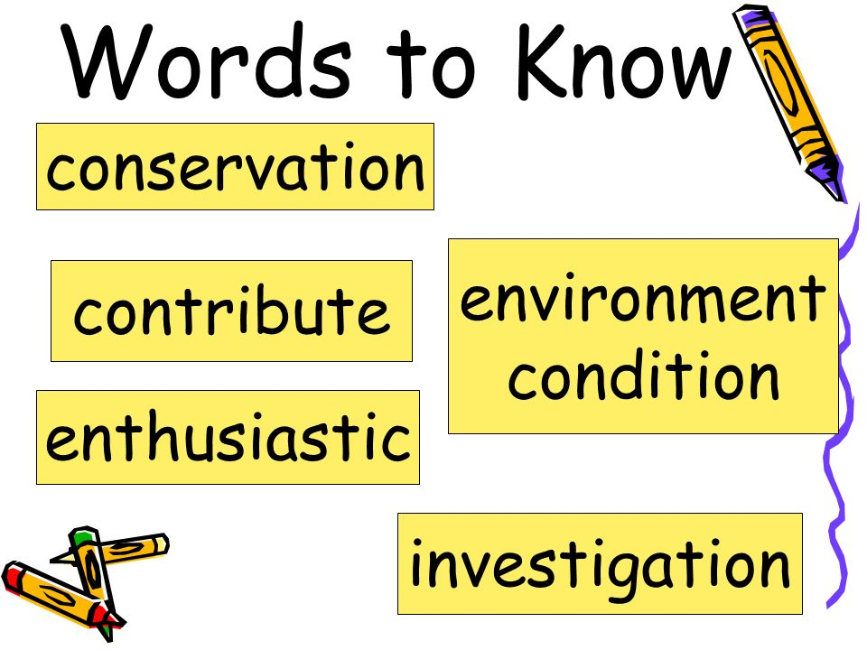 Words to Know conservation environment contribute condition