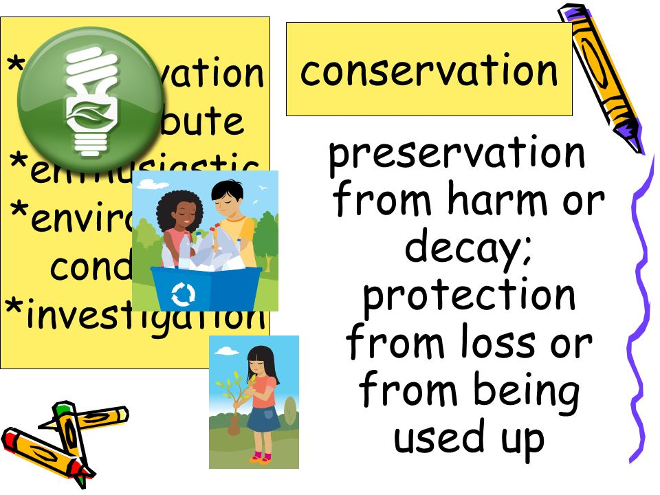 *conservation *contribute. *enthusiastic. *environment. condition. *investigation. conservation.