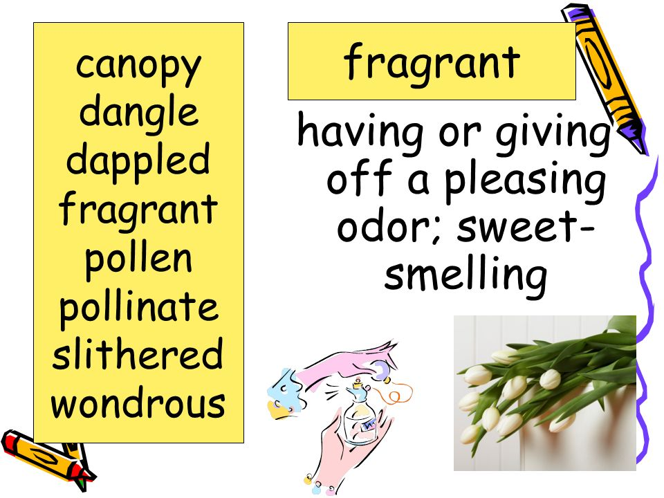 having or giving off a pleasing odor; sweet-smelling