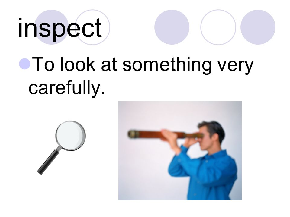 inspect To look at something very carefully.