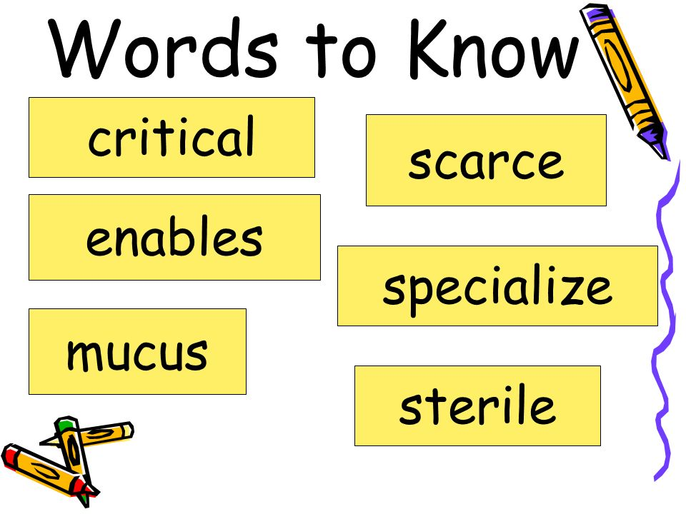 Words to Know critical scarce enables specialize mucus sterile