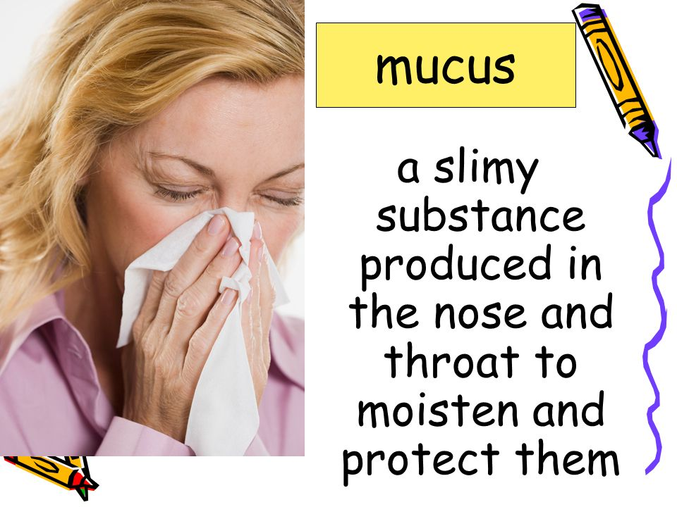 mucus critical. enables. mucus. scarce. specialize.