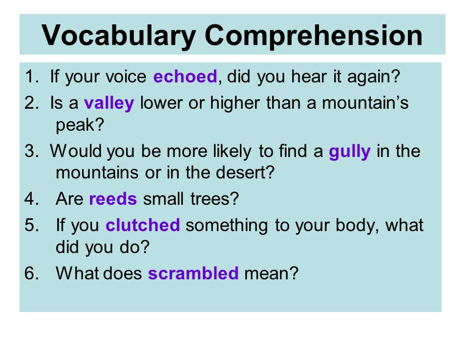 Vocabulary Comprehension