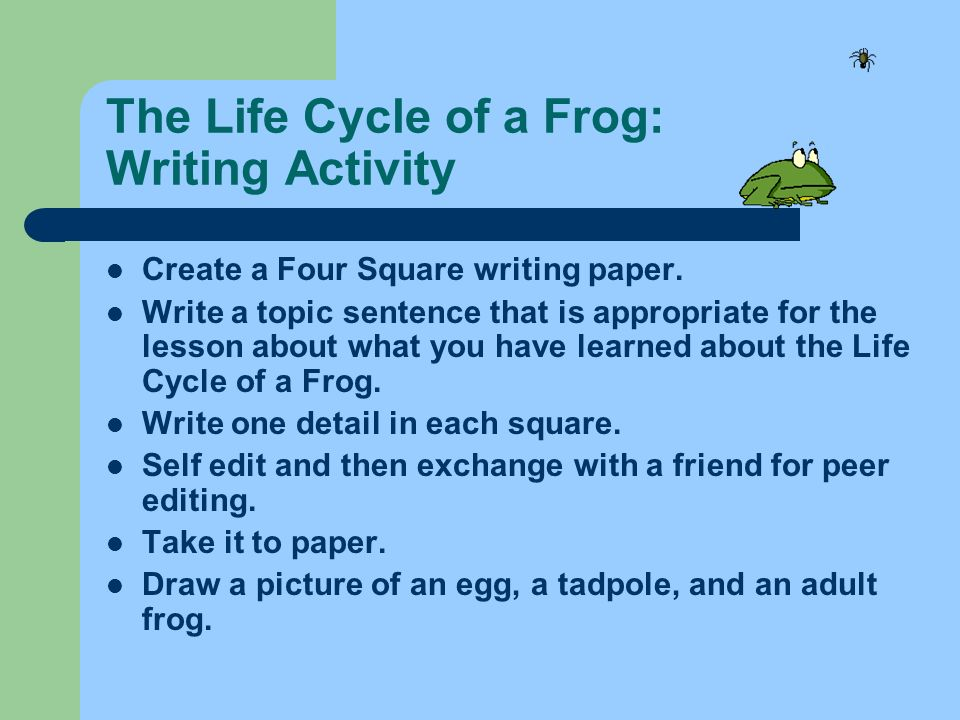 The Life Cycle of a Frog: Writing Activity