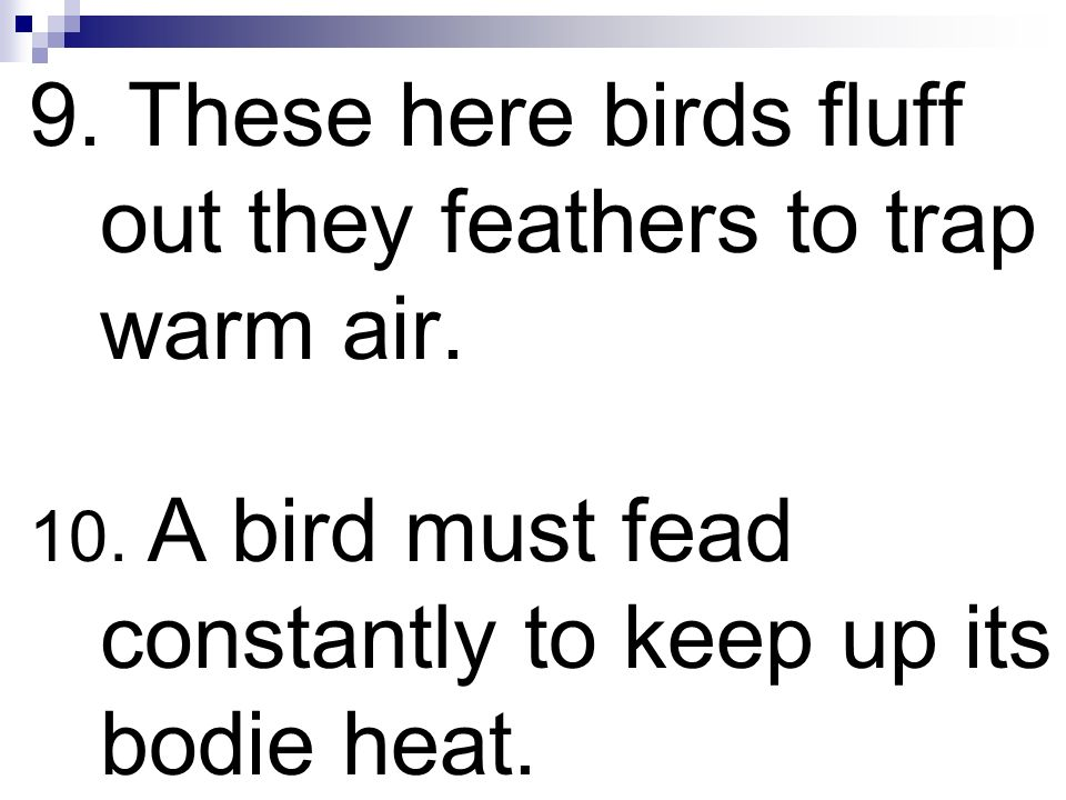 9. These here birds fluff out they feathers to trap warm air.