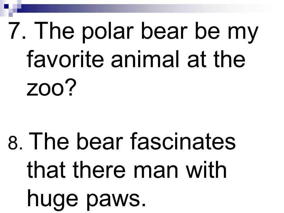 7. The polar bear be my favorite animal at the zoo