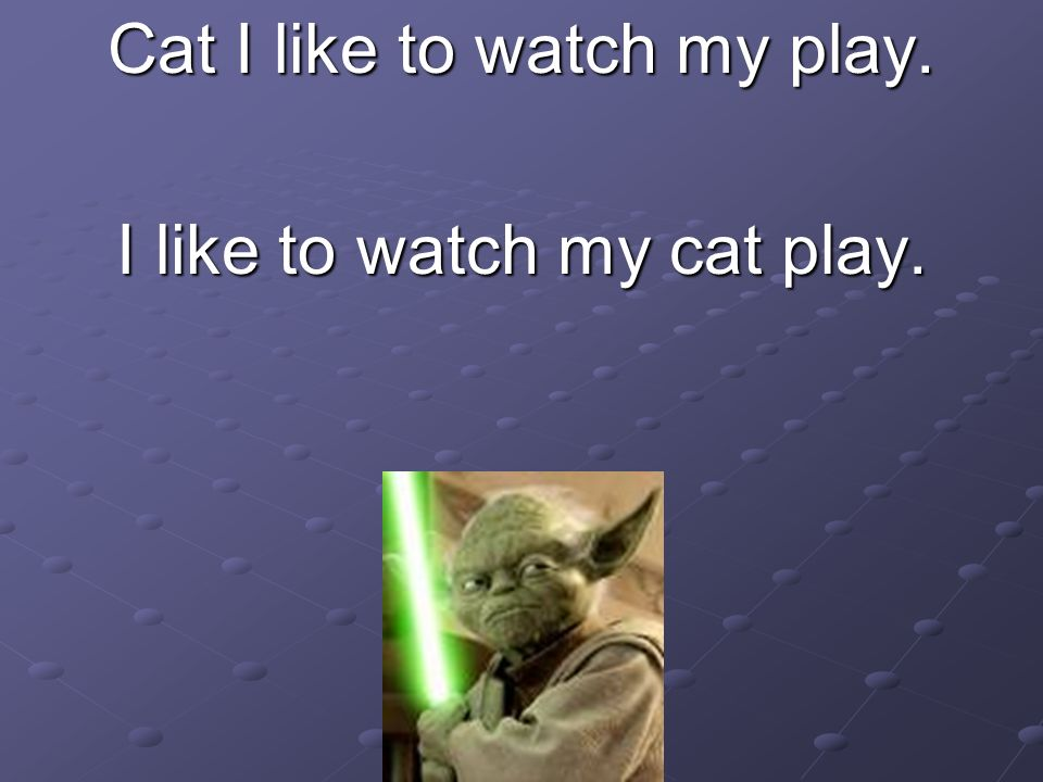 Cat I like to watch my play. I like to watch my cat play.