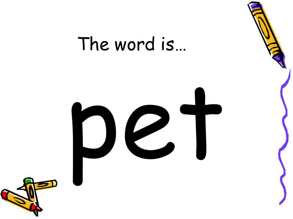 The word is… pet