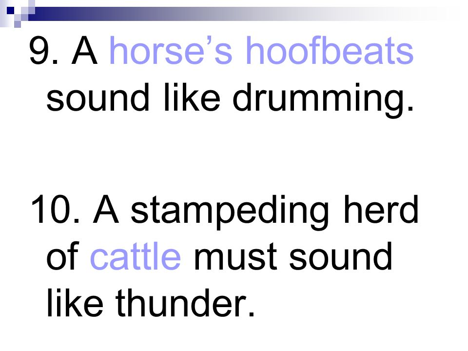 9. A horse's hoofbeats sound like drumming.