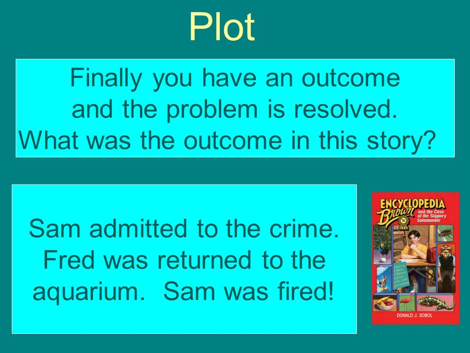 Plot Finally you have an outcome and the problem is resolved.