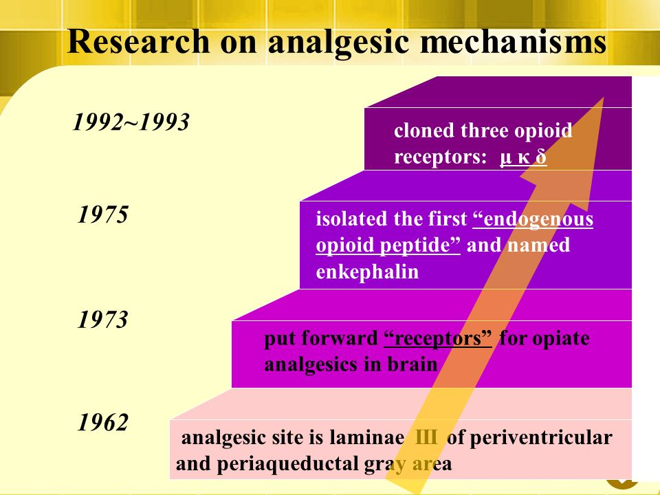 a research on opioid analgesics Bias factor and therapeutic window correlate to predict safer opioid  analgesics cullen l schmid x cullen l schmid search for articles by.