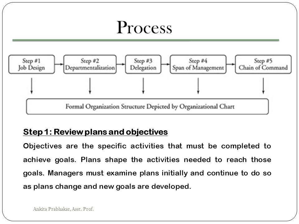 Process Step 1: Review plans and objectives