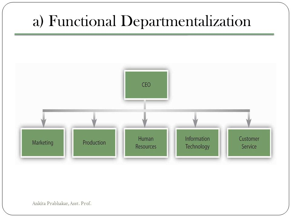 a) Functional Departmentalization