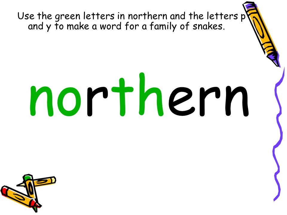 Use the green letters in northern and the letters p and y to make a word for a family of snakes.