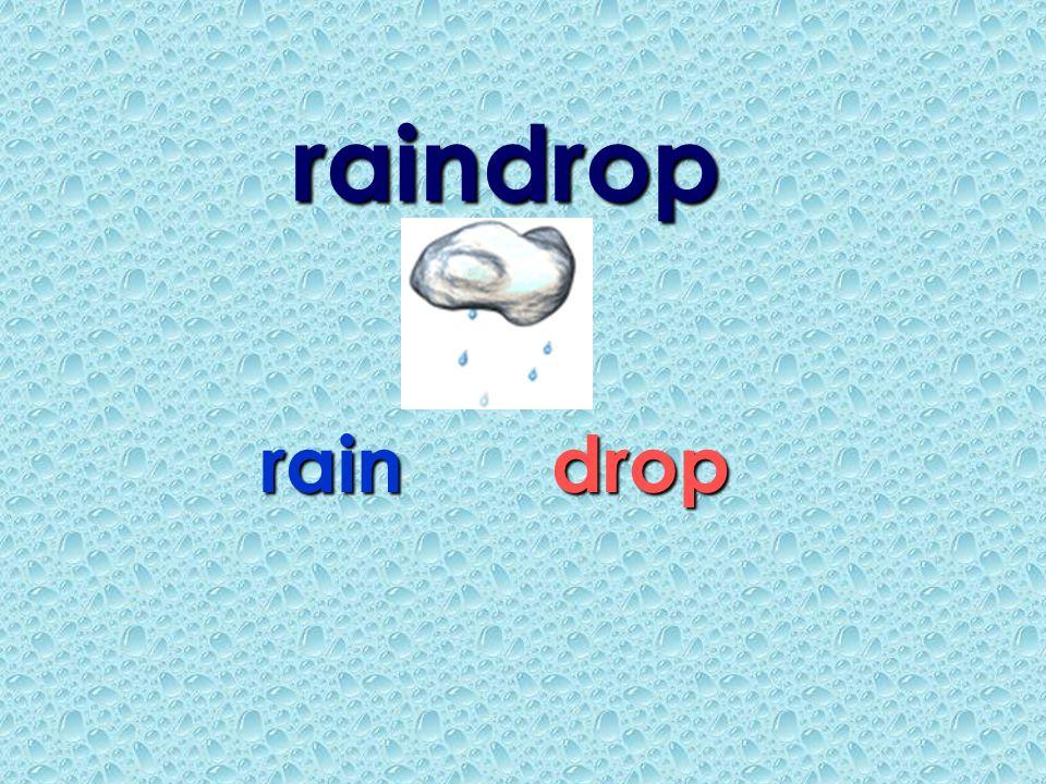 raindrop rain drop