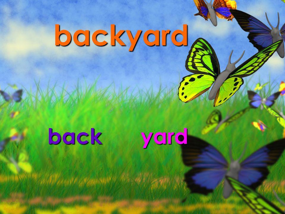 backyard back yard